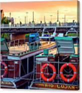 Tigre Delta 018 Canvas Print