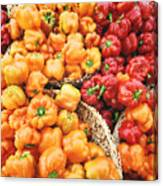 Tile Peppers Canvas Print