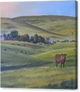 Till The Cows Come Home Canvas Print