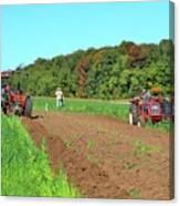 Tilled Soil   Canvas Print