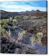 Tilt-shift Desert Wash Canvas Print