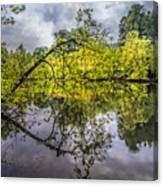 Time For Reflecting Canvas Print