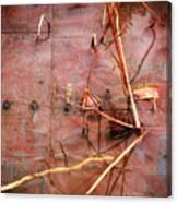 Tin Door - Red Pond Canvas Print