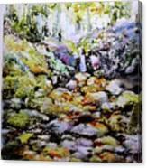 Tiny Brook Canvas Print