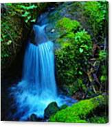 Tiny Falls Canvas Print