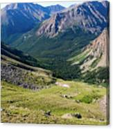 Tiny Hikers On The Mount Massive Summit Canvas Print