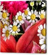 Tiny White Flowers Canvas Print