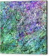 Tmprr11a Canvas Print