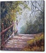 To Bog Meadow Canvas Print
