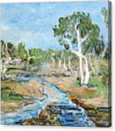 Todd River Canvas Print