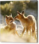 Togetherness - Mother And Kit Moment Canvas Print