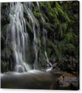 Tom Gill Waterfall, Cumbria, England Canvas Print