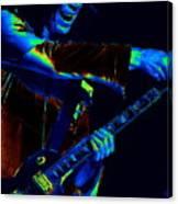 Boston Rock #1 Canvas Print