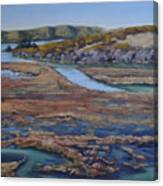 Tomales Bay Tangents Canvas Print