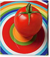 Tomato On Plate With Circles Canvas Print