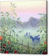 Tomatoes In The Mist Canvas Print