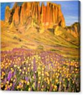 Tonto National Forest Canvas Print
