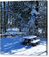 Too Cold To Picnic Canvas Print