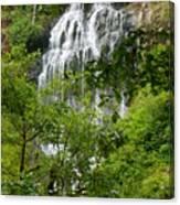 Top Of Munson Creek Falls Canvas Print