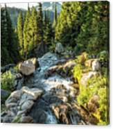 Top Of The Morning At The Top Of Myrtle Falls Canvas Print