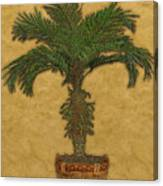 Topiary 3 Canvas Print
