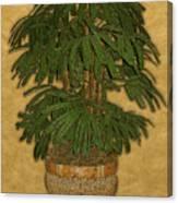 Topiary 4 Canvas Print
