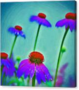 Toppers Canvas Print