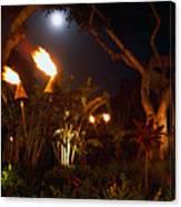 Torches Of Hawai Canvas Print