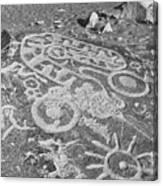 Toro Muerte Canvas Print