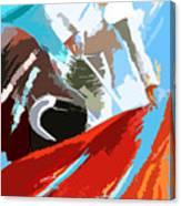 Toroscape 32 Canvas Print