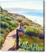 Torrey Pines Guy Fleming Trail Canvas Print