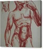 Torso Of  Michelangelo   David  Canvas Print