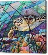 Tortuga carey cropped Canvas Print