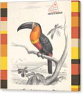 Toucan Bird Responsible Travel Art Canvas Print
