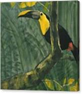 Toucan In Jungle Canvas Print
