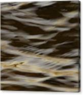 Touch Of Mink Canvas Print