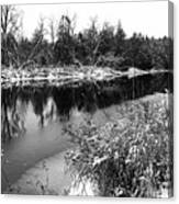 Touch Of Winter Black And White Canvas Print