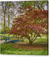 Tower Grove Arched Bridge And Maple Tree Dsc01828 Canvas Print