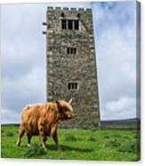Tower Of Joy Canvas Print