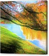 Town Pond Canvas Print
