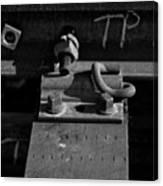 tp II Canvas Print