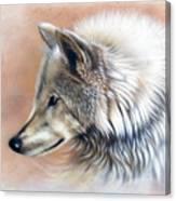 Trace IIi Canvas Print