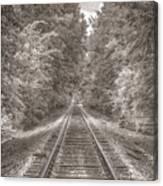 Tracks Bw Canvas Print