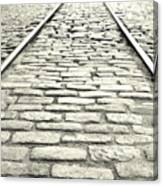 Tracks In The Road Canvas Print