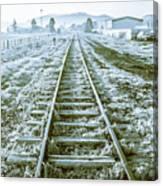 Tracks To Travel Tasmania Canvas Print