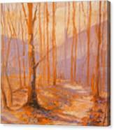 Trail Eight Canvas Print