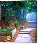 Trail In Woods Canvas Print
