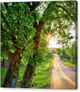 Trail Into Sunset Canvas Print