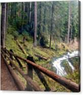 Trail Over Sol Duc Falls Bridge In Olympic National Park Canvas Print