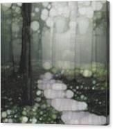 Trail Series 5 Canvas Print